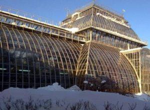 Komarov botanikus intézet