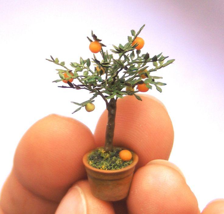 Növénynevelés a télikertben