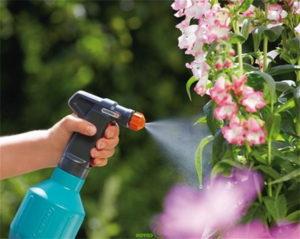 Növényvédelem szakszerűen.